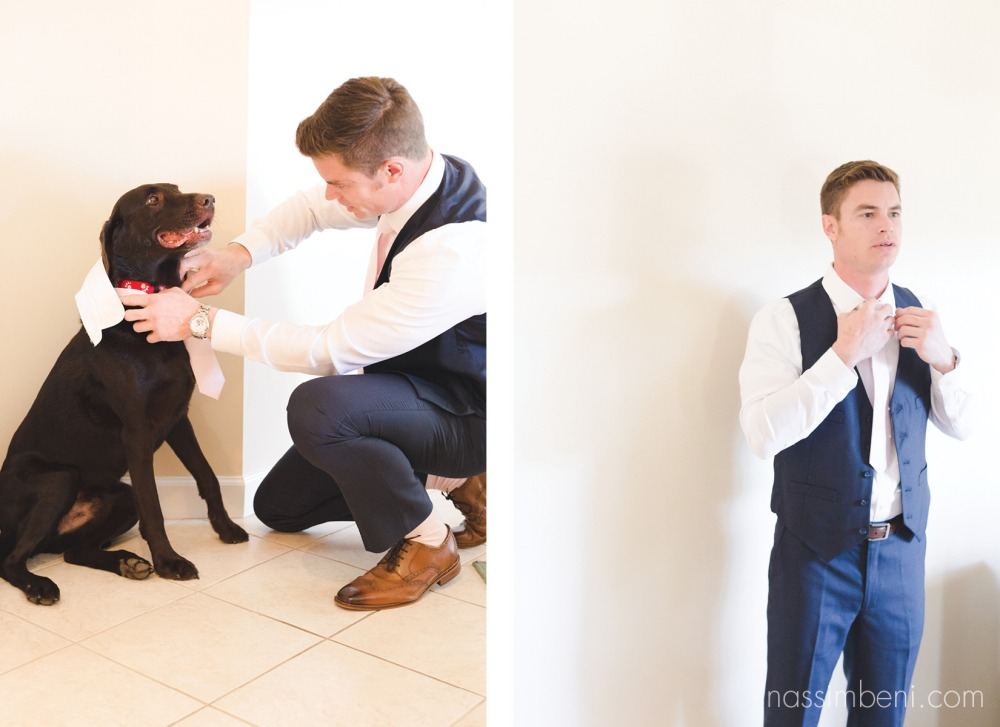 groomsdog prep photo at Bellewood Plantation in Vero Beach Florida by Nassimbeni Photography