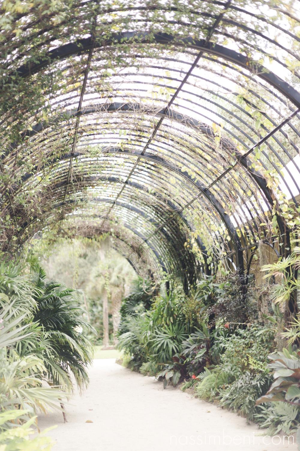 McKee-botanical-gardens-engagement-photos-by-central-florida-photographer-karen-nassimbeni-of-nassimbeni-photogrpahy-6