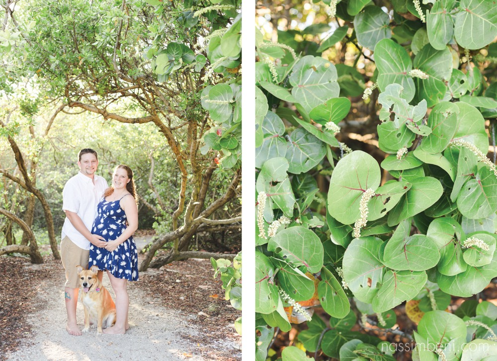 stuart floridas maternity session at bob graham beach by nassimbeni photography