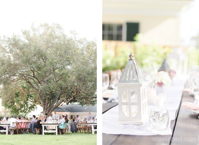 ginat oak at bellewood plantation wedding by nassimbeni photography