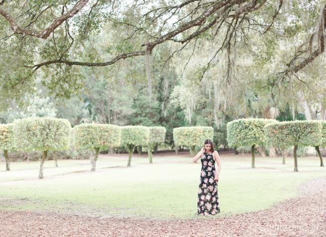 bok tower gardens beautiful landscape by nassimbeni photography