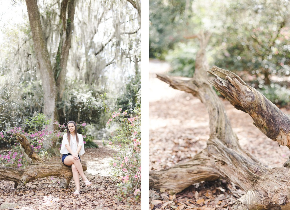 log bench at bok tower gardens by nassimbeni photography