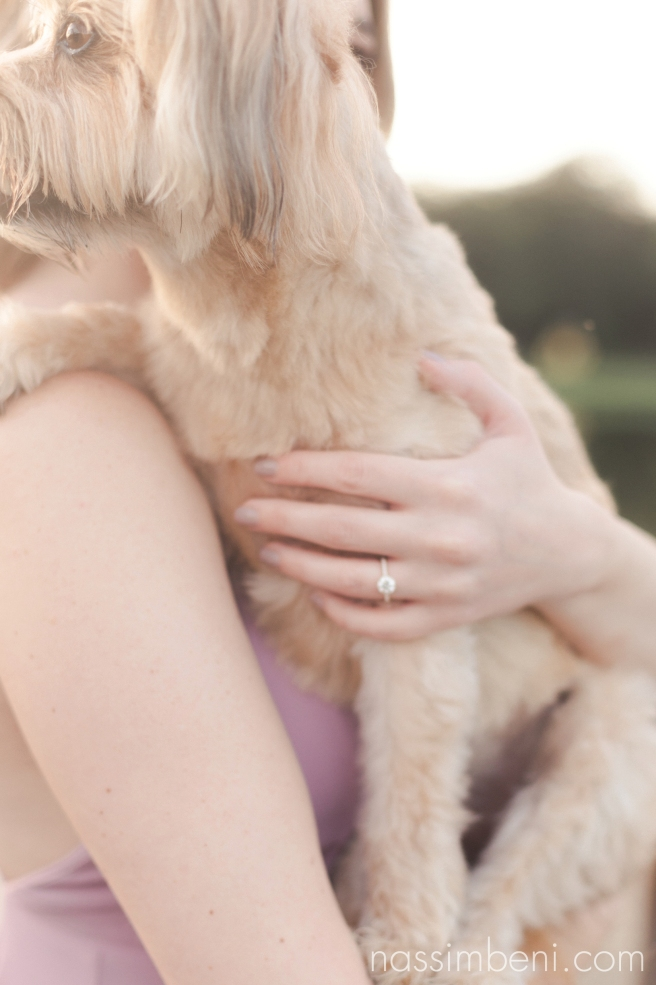 puppy and engagement ring at Gleason Park sunrise session by nassimbeni photography