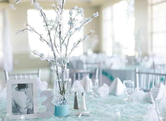 Ballantrae-gold-club-wedding-Santa-Lucia-River-Club-wedding-nassimbeni-photography-and-videography-4