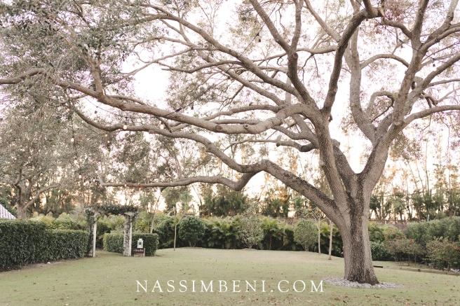florida plantation wedding venue