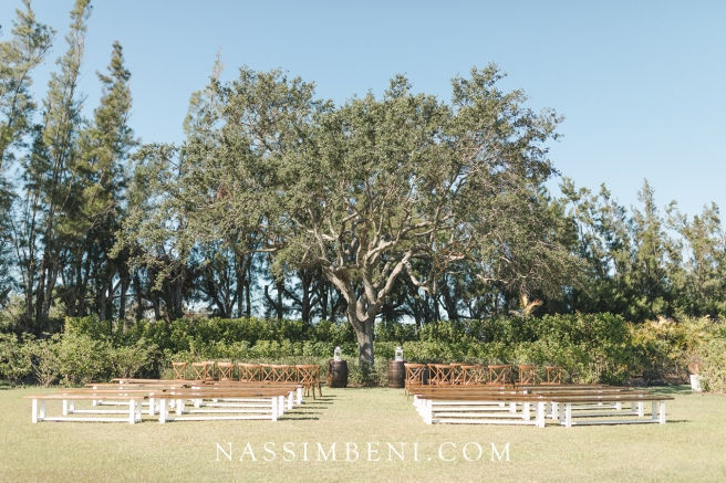 under the tree ceremony at bellewood plantation